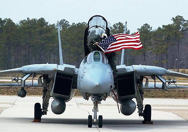 Click image for larger version  Name:F14 flag.jpg Views:3 Size:59.3 KB ID:47316
