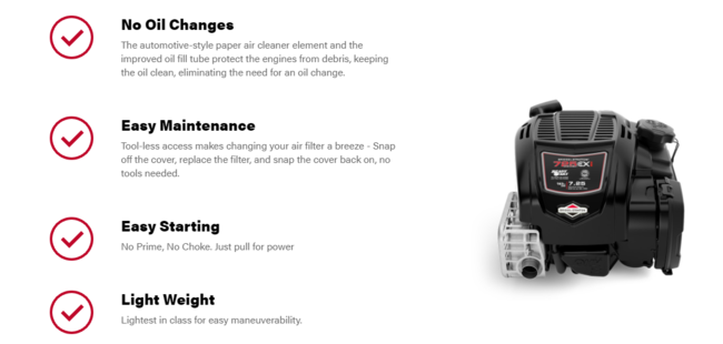 Click image for larger version  Name:B&S No Oil Change.PNG Views:7 Size:134.9 KB ID:53751