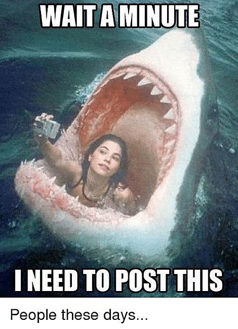 Click image for larger version  Name:ate by a shark.jpg Views:6 Size:55.8 KB ID:39619